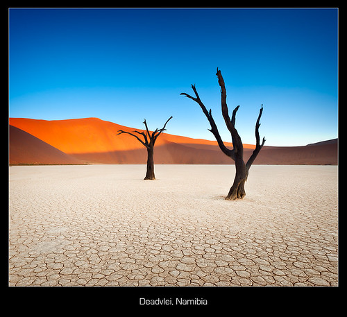 Deadvlei Abstract