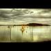 Lago Trasimeno+Isola Polvese+HDR