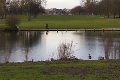 The Long Water, Hyde Park, W2 (Tetramesh) Tags: uk greatbritain england london river walking walks unitedkingdom britain walk rivers londres bourne londra kilburn bayswater londen lostriver londinium lontoo llondon serpentineriver londone londyn llundain londn  lostrivers londonriver londain londono londonsrivers tetramesh londrez walklondon  thebourne loundres londonrivers londonslostrivers londr lndra  cyebourne royalstream kelebourne bayswaterriver bayswaterrivulet westburnbrook theranelaghriver theranelaghsewer