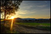 Lithrodontas village fields sunset (Mike G. K.) Tags: road sunset sun mountains tree field nikon village path cyprus dirt fields rays hdr photomatix 3exp λυθροδόντασ d5100 mikegk:gettyimages=submitted lithrodontas