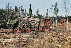 KFF (The Koehring Guy) Tags: trees forestry logging loader feller kff forwarder buncher kf2 koehring
