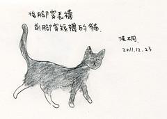 (Apaul) Tags: pencil cat sketch stylus colorpencil 201112