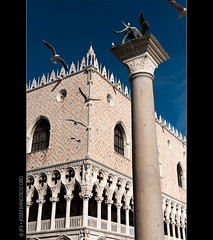 Palazzo Ducale [5295] (josefrancisco.salgado) Tags: plaza venice italy sculpture bird statue fauna square nikon europa europe palace it escultura ave nikkor estatua venecia venezia palazzoducale dogespalace pjaro piazzasanmarco palacio veneto rivadeglischiavoni d700 2470mmf28g