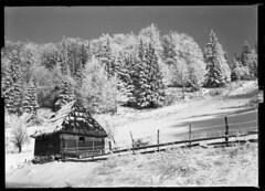 Winter scene - Vlasenica (BG Sixtyniner) Tags: winter mountain snow cold film landscape tank cottage super developer handheld linhof sheet 100 process rodinal envoy schneider kreuznach xenar efke 105mm technika 16c