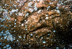 Petroglyph (natestation2) Tags: statepark color film canon iso100 is sandstone kodak indian l cave lichen petroglyph f4 70200mm ektar