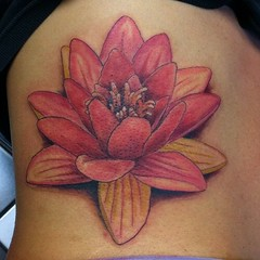 First sitting on Shellie's side...  #scottwhite #visualvortex #tattoo #lotus #flower #lily