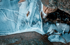 Ice Demon (Boreal Bird) Tags: wow sprite ghosts mustache icedemon sliderssunday coolbutkindacreepytoo