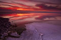 Sunrise Through the Ice_DSC0452 (antelope reflection) Tags: lake reflection ice colors sunrise utah antelopeisland greatsaltlake