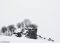 The dark rock . . . (Astrid Photography.) Tags: trees mountain snow france cold rock frost savoie lesmenuires blueribbonwinner bej explore145 astridphotography lebruyères 50favlandscape