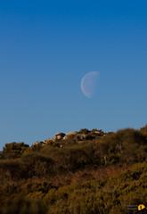 Luna con verde - 6862 (Roberto Miliani / Ginepro) Tags: sea moon trekking canon walking island eos elba mare hiking ile luna tuscany granite toscana elbe isola toskana 500d camminare granito isoladelba parconazionale arcipelagotoscano