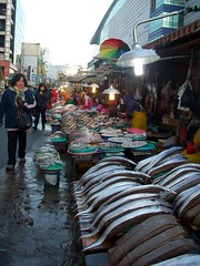 105_2018 (bbcgirl11) Tags: fish market busan koreatravel