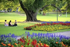Girls on a Picnic (Alex E. Proimos) Tags: life city flowers beauty gardens relax botanical chat picnic afternoon wine time teenagers teens talk melbourne victoria eat drinks precious enjoy romantic date twenties