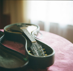 details from home, one of many. (tumbleweed.in.eden) Tags: birthday mandolin hasselblad instrument christmastime windowlight 500cm portra400 anotherabsolutefavoritefrommyholidayvisithome especiallysinceimsuchabluegrassfan