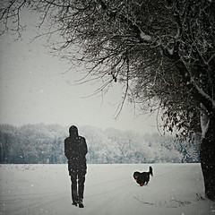 We are alone, absolutely alone on this chance planet; and amid all the forms of life that surround us, not one, excepting the dog has made an alliance with us. (www.juliadavilalampe.com) Tags: dog snow man tree getty gettyimages juliadavila juliadavilalampe