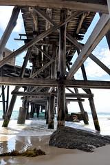 Catherine Hill Bay, NSW (Pinch River) Tags: texture beach pier rust jetty timeworn agedwood catherinehillbay patinaofage gabriellatagliapietra oldcoalloader eastlakemacquarie historiccatherinehillbay