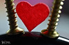 ,' (Fatimah Alzwyed .. Instagram:fatimahalzwyed) Tags: nikon flickr ورق قلب 7000 anin فلكر أحمر ماكرو نيكون دي اضاءة مسمار بصمة d7000 أنين مغناطيس pasmat