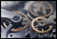 _M9P1_L1010192 copy (mingthein) Tags: leica test shot flash watch machine gear m equipment ming speedlight bellows summilux asph viso m9 fle visoflex 3514 onn strobist thein pcsync sb900 photohorologer visoflexiii bellowsii sb700 mingtheincom m9p