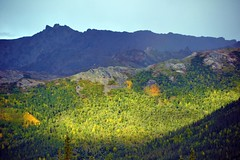 Valley of Light, mountains in Denali National Park (blmiers2) Tags: park travel light sunlight mountains alaska landscape nikon day clear national valley denali d3100 blm18 blmiers2