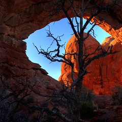 Turret Arch (lauraxfire) Tags: arches turretarch