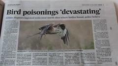 hunt for wildlife criminals (BSCG (Badenoch and Strathspey Conservation Group)) Tags: kt