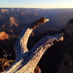 The Grand Canyon at Sunrise