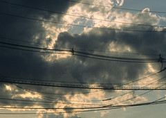 Suburban Sky 4 (stevensiegel260) Tags: net clouds cables wires telephonewires