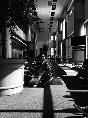 Airport waiting (chloejadeyoung) Tags: travel family summer vacation people blackandwhite usa sun holiday hot nature monochrome contrast america outdoors photography airport still student warm break shadows chairs florida miami sunny journey abroad sit heat wait humid neutral 2015