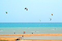 18_05_2016 (playkite) Tags: kite perfect may egypt kiteboarding kitesurfing gouna vacations kiting  2016        kitelessons