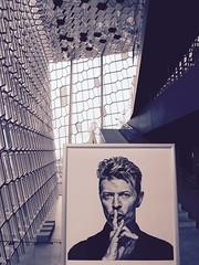 Harpa Reykjavik Concert Hall, Iceland (Jamie Finlay Macdonald) Tags: bowie iceland reykjavik harpa