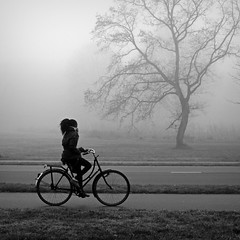 Biker in the fog (Iam Marjon Bleeker) Tags: holland tree bike bicycle fog biker ijmuiden girlonabike treeinthefog herenduinweg mistinspaarnwoude036g