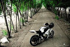 Honda - (CBR|1000) (Abdulaziz ALKaNDaRi | Photographer) Tags: bike canon honda photography eos photo flickr photos bikes rr kuwait hq ef 1000 cbr q8 fireblade 2011  abdulaziz     kuw 550d  t2i  alkandari blinkagain abdulazizalkandari