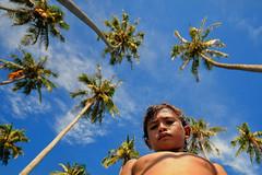 Sibuan Island, Semporna - Bajau Laut Boy (Mio Cade) Tags: boy sea tree island village child play coconut laut swing malaysia gypsy sabah semporna bajau sibuan