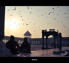 Rewind (Rahul De) Tags: old trip morning cold fog vintage back nikon day delhi muslim culture getting pidgeons dilli masjid rewind jama d90 goldspot whle rahulde