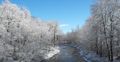 Riviere aux hurons in winter (pegase1972) Tags: quebec canada montérégie river water winter snow nspp scenicsnotjustlandscapes licensed getty exclusive