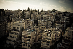 The Rooftops of Jerusalem