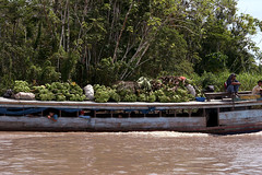 Banana Delivery (cowyeow) Tags: poverty wood travel people peru latinamerica southamerica water river children boat amazon rainforest transport banana bananas jungle tropical delivery loreto peruvian madreselva amazonriver