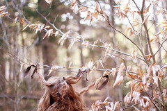 361/365 (signe constable.) Tags: autumn trees selfportrait forest hair woods 50mm14 hanging year2 ribbon redhair joannanewsom deepbreath day361 bokah 365days brownribbon 365more winterreally december30th2011