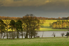 Harewood. (jillyspoon) Tags: trees light lake green water landscape eos countryside estate view zoom yorkshire overcast hues fields harrogate distance christmaseve northyorkshire harewoodhouse copse harewood countryestate 60d canon60d 55250mm niftytwofifty