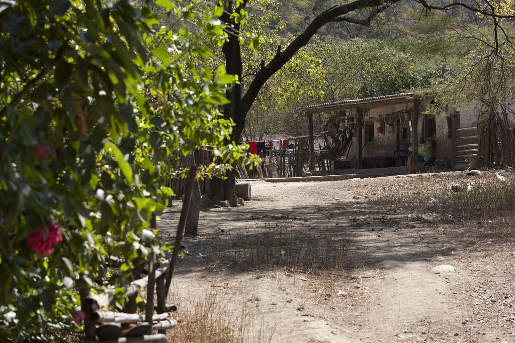 Plantation de Luis Santos GARCIA - Habitation