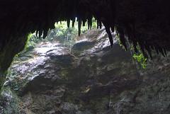 Cave Entrance - Camuy Caves Park - Quebrada - Puerto Rico - 23 December 2011 (goatlockerguns) Tags: park usa nature puerto rico caves jungle tropical caribbean caverns quebrada camuy 2011