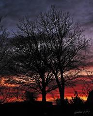 Light My Fire. (gos1959) Tags: sky tree clouds mygearandme mygearandmepremium mygearandmebronze mygearandmesilver mygearandmegold pregamewinner biersted bbng