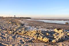 Dog Beach - Sand & Foam - long view to OB Pier (Driven to Capture 2) Tags: sunrise oceanbeach ob dogbeach bigwaves sandigo sandiegoriver 1stsun