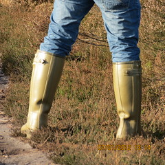 wellies standing (fiona.edwards) Tags: blue green standing legs rubber heath common wellies westend brentmoor