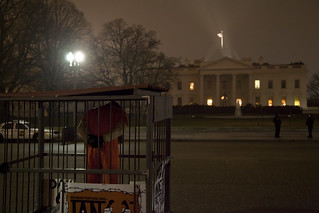 Witness Against Torture: A Somber Sight