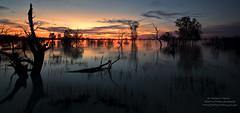 Menindee Sunset Landscape Ver 2 (Firefly Photos Australia) Tags: sunset lake day6 katon menindee fireflyphotos malcolmkaton mungotomenindee menindeesunset