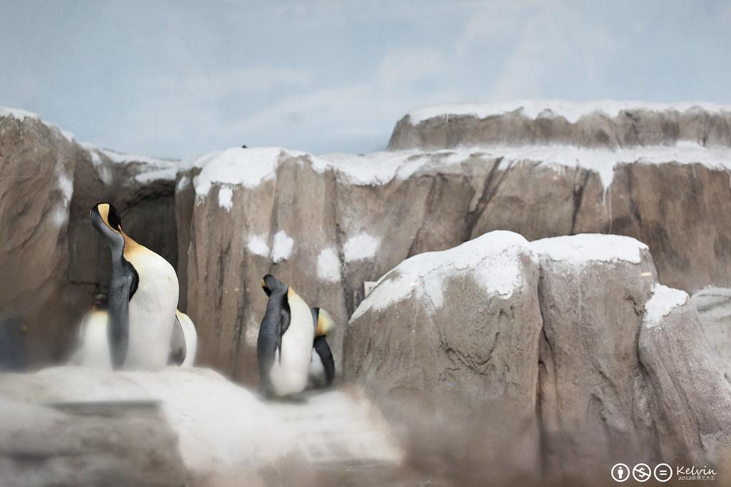 20120115小可樂動物園PAPAGO-17.jpg