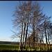 Naturpark Nordeifel