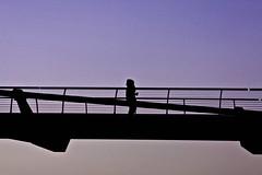 One More Cup of Coffee (Beanotown Photography) Tags: bridge light black colour london coffee silhouette purple dusk drop ponte valley bobdylan londra height bold twitter canon50d wwwbeanotownphotographycom beanotownphoto