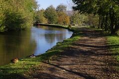 Leeds and Liverpool Canal (Dave Hamster) Tags: bridge canal yorkshire narrowboat northyorkshire waterway towpath gargrave leedsandliverpoolcanal leedsandliverpool