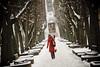 Winter Colors   Red #17/366 (A. Aleksandravičius) Tags: street winter people snow nikon dof sigma 365 avenue 70200 lithuania kaunas soboras project365 365days alėja 15365 d700 laisvės nikond700 sigmaapo70200mmf28iiexdgmacrohsm 3652012